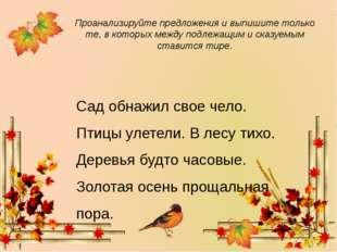Сад обнажил свое чело. Птицы улетели. В лесу тихо. Деревья будто часовые. Зо