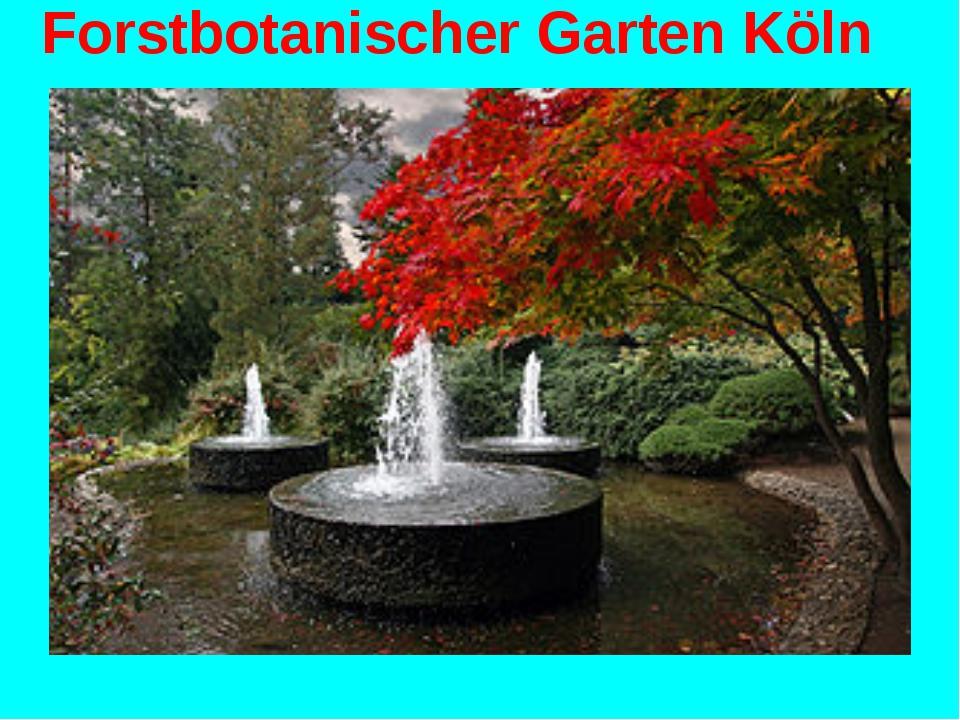 Forstbotanischer Garten Köln Wechseln zu: Navigation, Suche