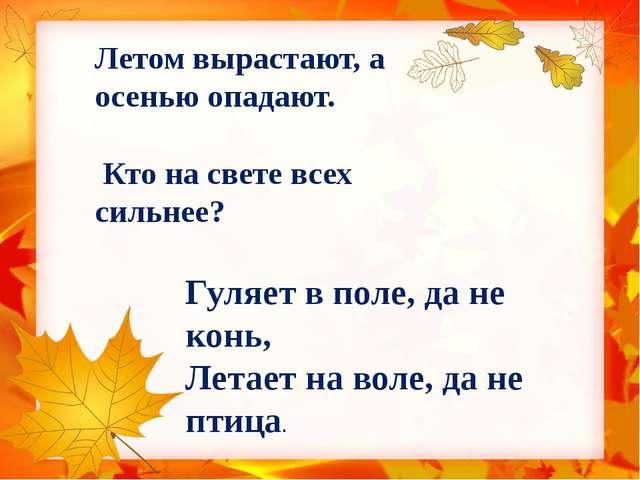 Летом вырастают, а осенью опадают. Кто на свете всех сильнее? Гуляет в поле,...