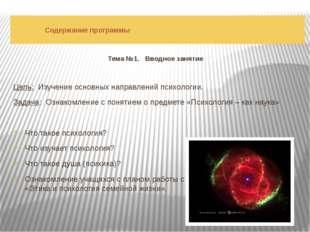 Содержание программы Тема №1. Вводное занятие Цель: Изучение основных направ