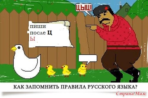 C:\Users\Каримов Рауф\Documents\правило и ы после ц.jpg