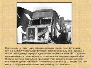 Краснодарцы не сразу узнали о назначении крытых темно-серых грузовиков, котор