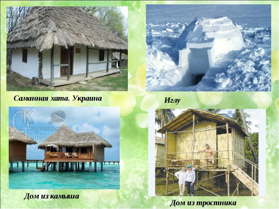 Саманная хата. Украина Дом из камыша Дом из тростника Иглу