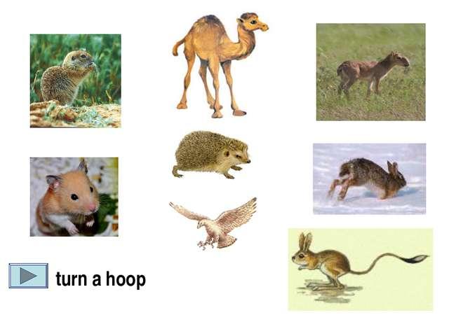 turn a hoop