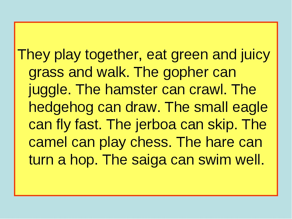 They play together, eat green and juicy grass and walk. The gopher can juggl...