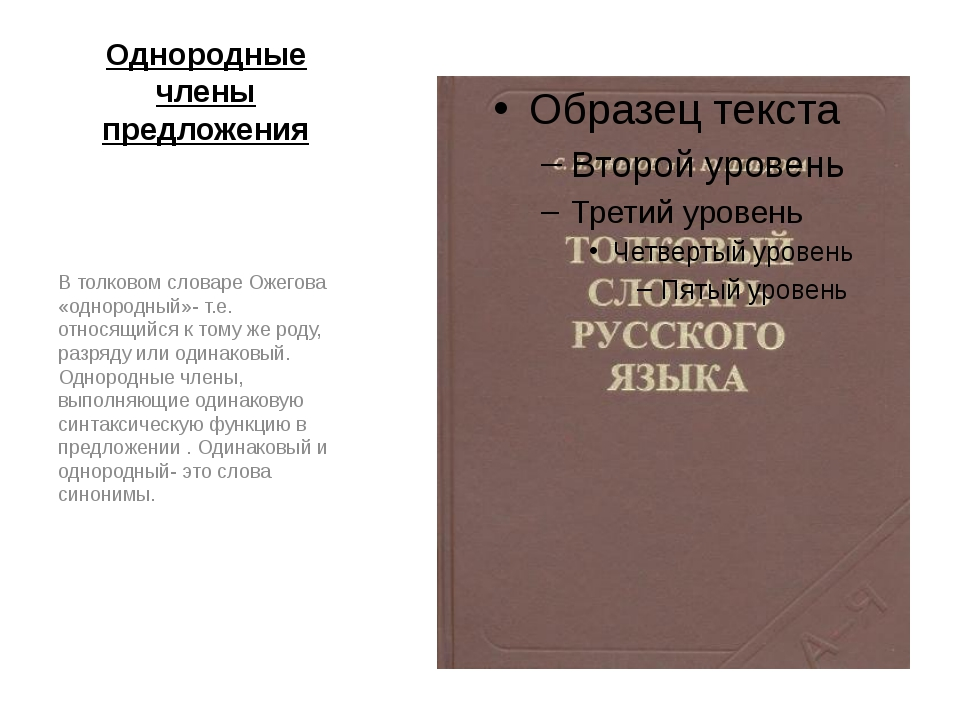Однородные члены предложения В толковом словаре Ожегова «однородный»- т.е. от...