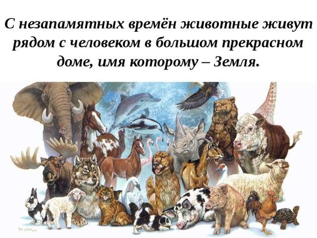 С незапамятных времён животные живут рядом с человеком в большом прекрасном д...