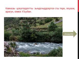 Кавказы цœугœдœтты зындгонддœртœ сты терк, леуахи, арагун, œмœ ХЪубан. Дарддœр
