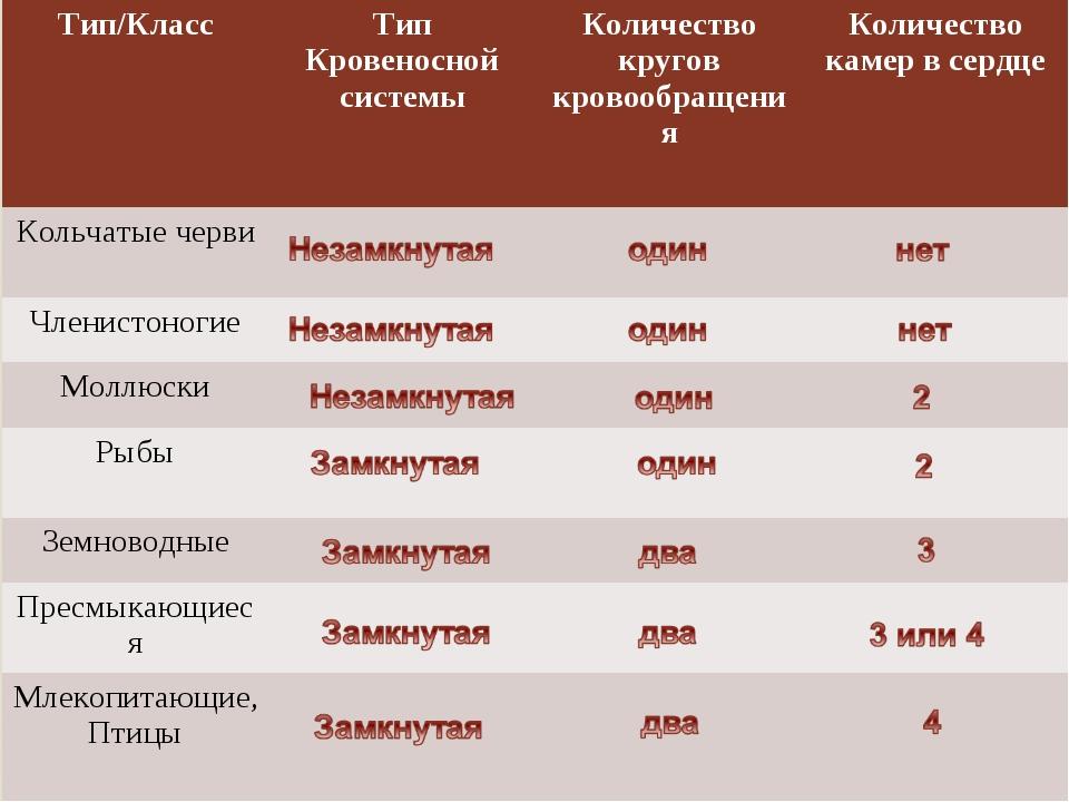Тип/КлассТип Кровеносной системыКоличество кругов кровообращенияКоличество...