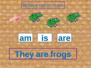 They frogs am is are Вставьте глагол «to be» are