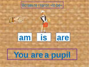 You a pupil am is are Вставьте глагол «to be» are