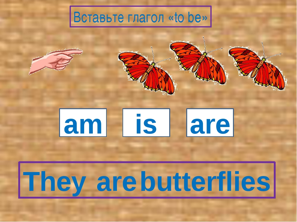 They butterflies am is are Вставьте глагол «to be» are