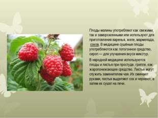 Плоды малины употребляют как свежими, так и замороженными или используют для