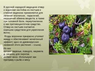 В русской народной медицине отвар и водочная настойка из листьев и стеблей во