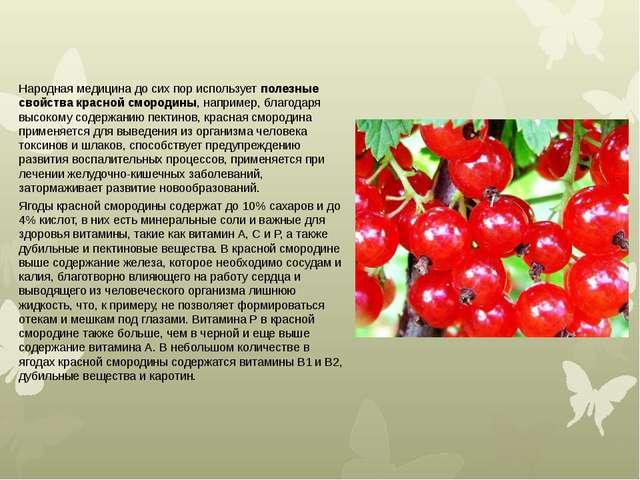 Народная медицина до сих пор используетполезные свойства красной смородины,...