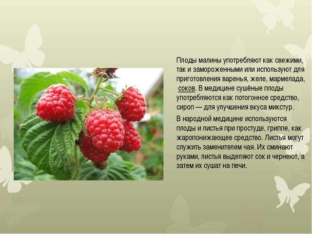 Плоды малины употребляют как свежими, так и замороженными или используют для...