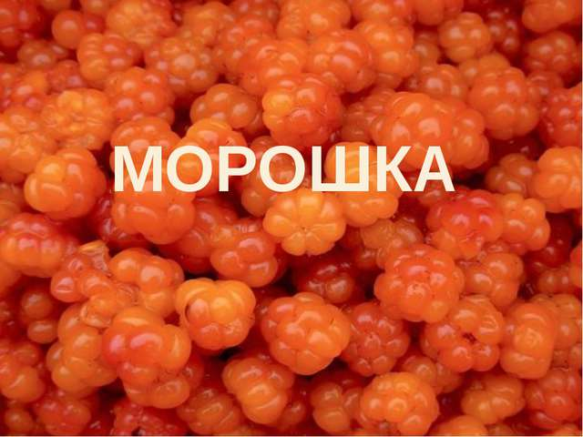 МОРОШКА
