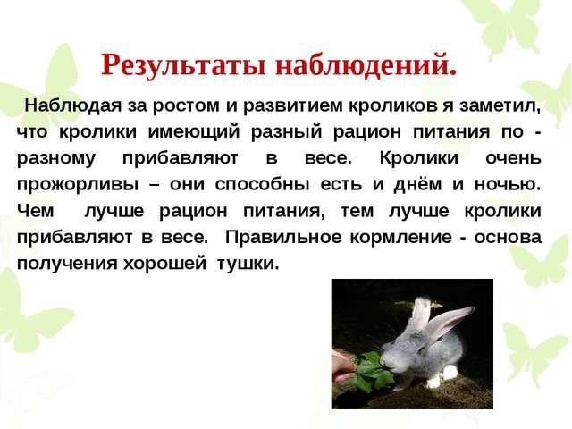Результаты наблюдений. Наблюдая за ростом и развитием кроликов я заметил, что...