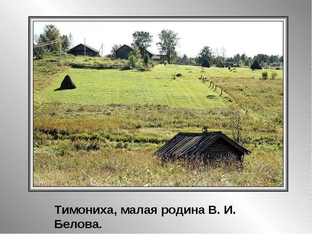Тимониха, малая родина В. И. Белова.