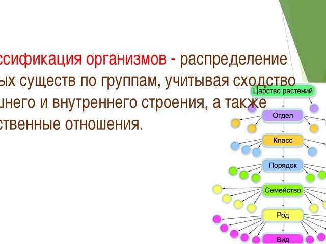 Классификация организмов - распределение живых существ по группам, учитывая с...