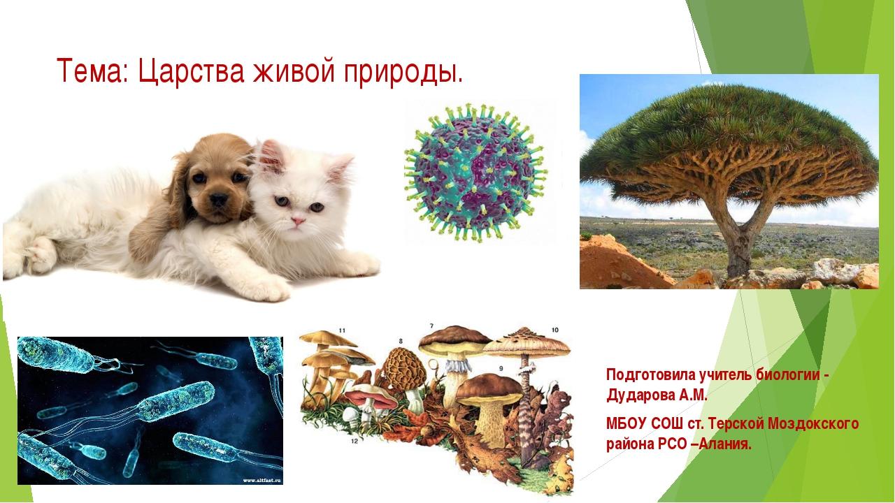 Тема: Царства живой природы. Подготовила учитель биологии - Дударова А.М. МБО...