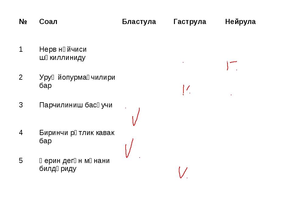 №СоалБластулаГаструлаНейрула 1Нерв нәйчиси шәкиллиниду 2Уруқ йопурма...