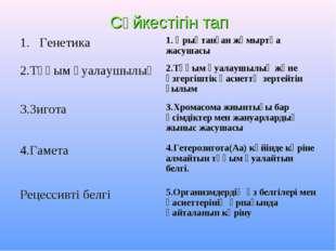 Сәйкестігін тап