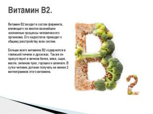 Витамин B2 входит в состав фермента, влияющего на многие важнейшие жизненные