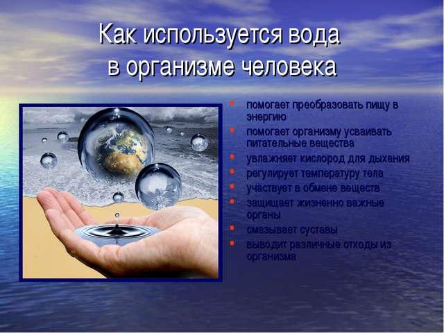Как используется вода в организме человека помогает преобразовать пищу в энер...