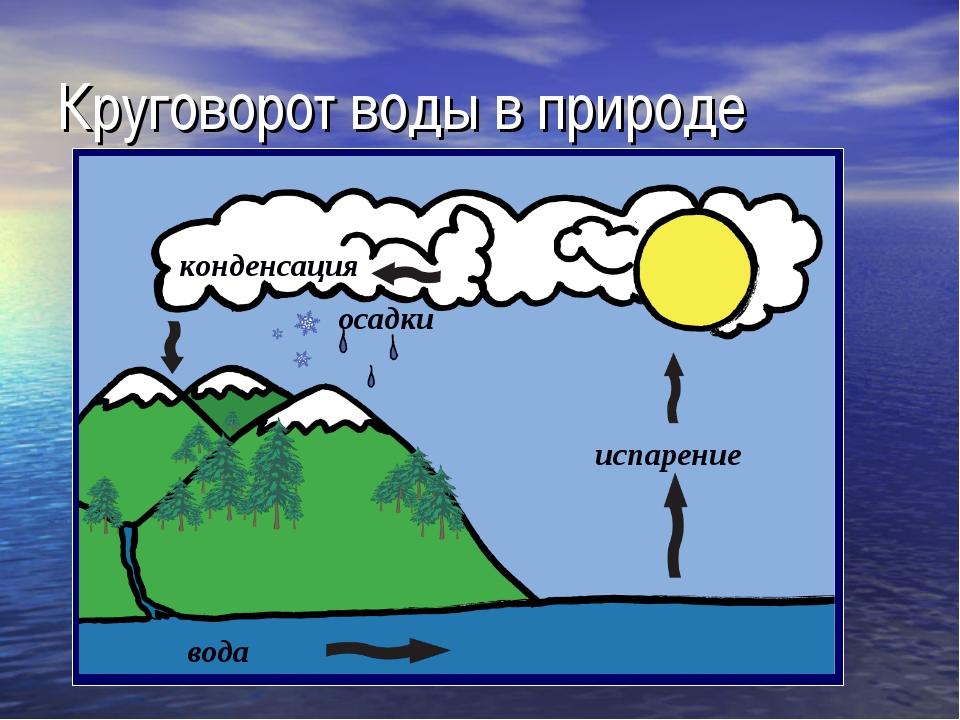 Сказка про круговорот воды в природе