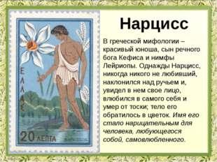 В греческой мифологии – красивый юноша, сын речного бога Кефиса и нимфы Лейри
