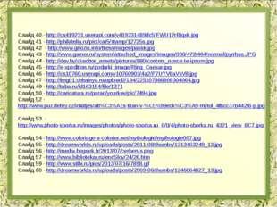 Слайд 40 - http://cs419231.userapi.com/v419231489/fc5/FWU17rBIqxk.jpg Слайд 4