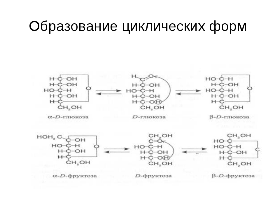 Образование циклических форм