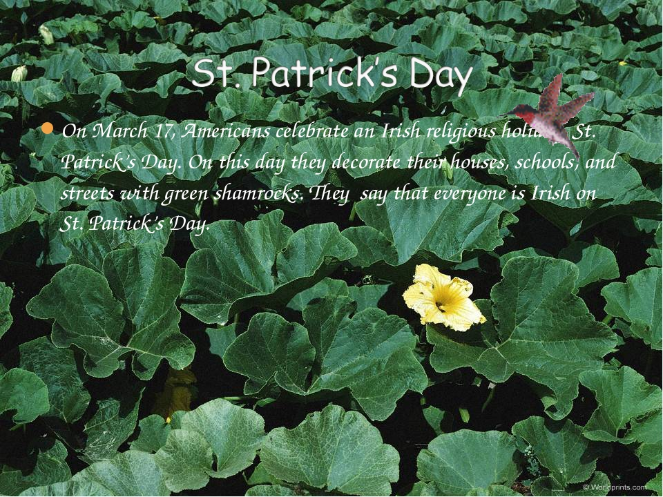 On March 17, Americans celebrate an Irish religious holiday, St. Patrick's Da...