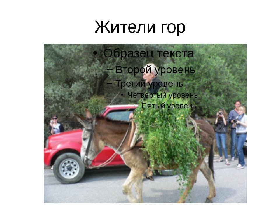 Жители гор