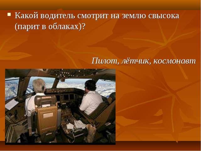 Какой водитель смотрит на землю свысока (парит в облаках)? Пилот, лётчик, кос...