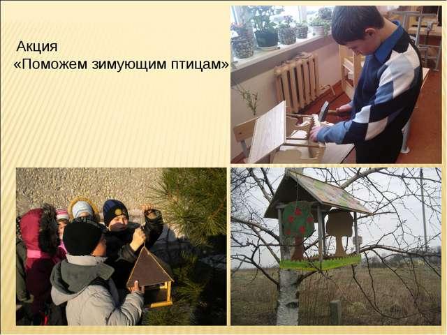 Акция «Поможем зимующим птицам»