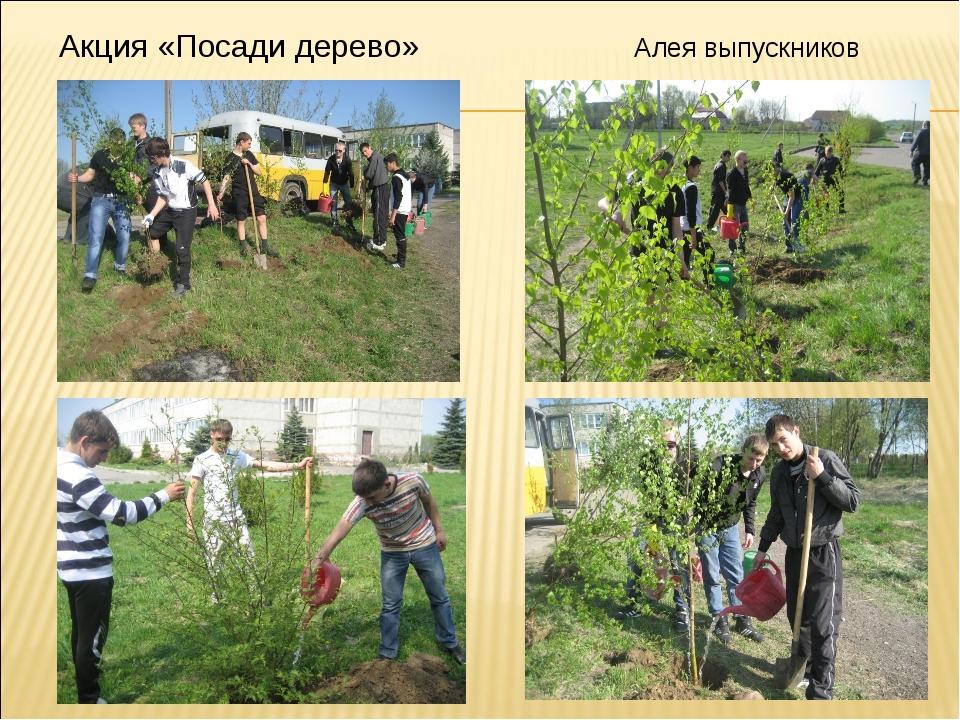 Акция «Посади дерево» Алея выпускников