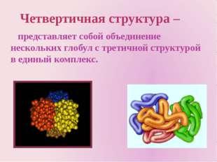 представляет собой объединение нескольких глобул с третичной структурой в ед