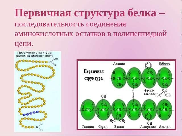 Первичная структура белка –последовательность соединения аминокислотных остат...