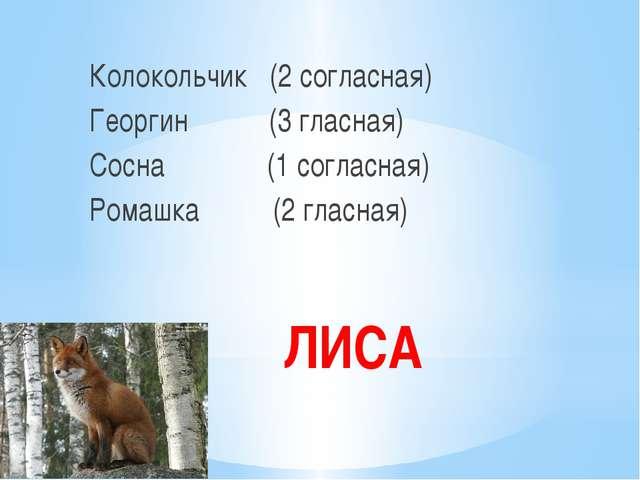 ЛИСА Колокольчик (2 согласная) Георгин (3 гласная) Сосна (1 согласная) Ромашк...