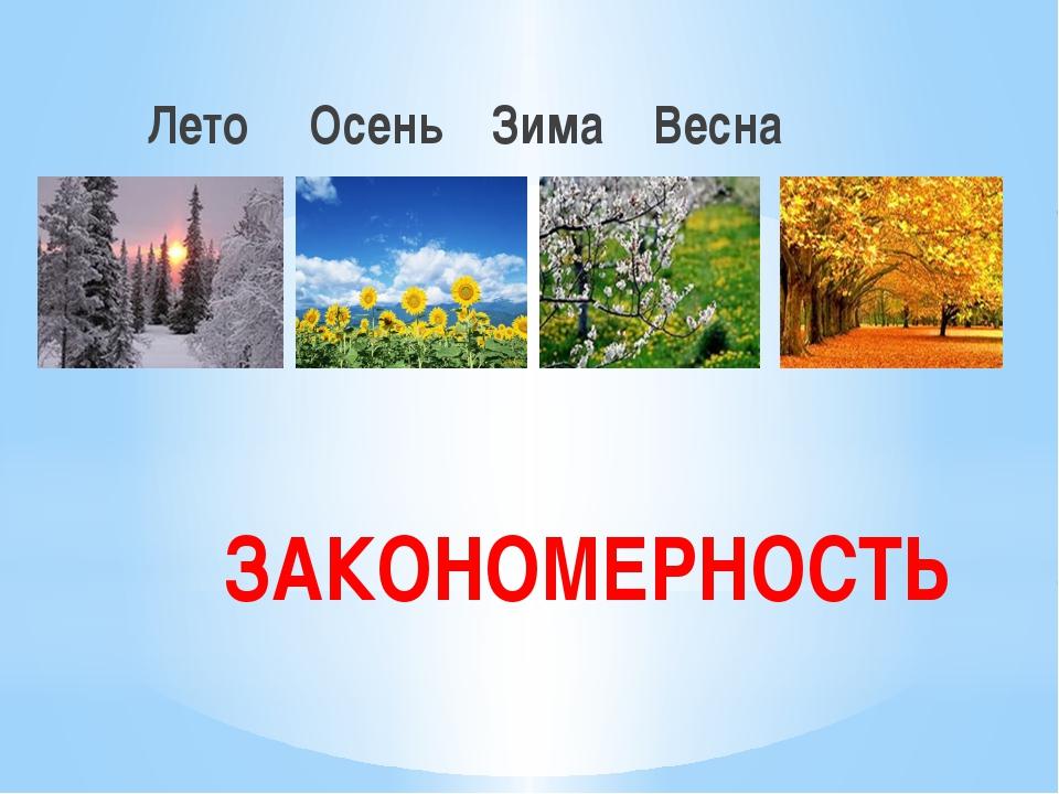 ЗАКОНОМЕРНОСТЬ Лето Осень Зима Весна