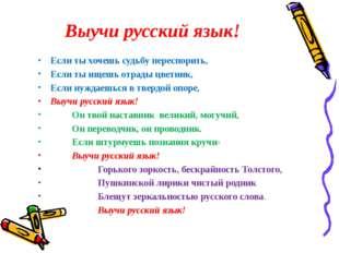 Выучи русский язык! Если ты хочешь судьбу переспорить, Если ты ищешь отрады