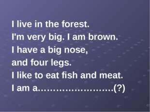I live in the forest. I'm very big. I am brown. I have a big nose, and four