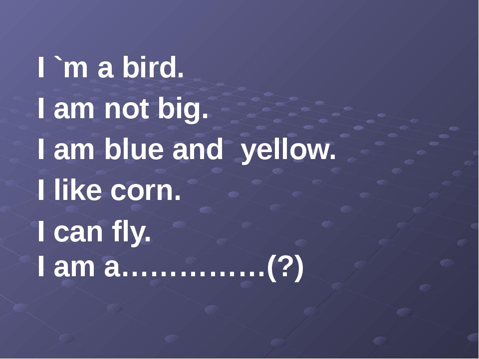 I `m a bird. I am not big. I am blue and yellow. I like corn. I can fly. I a...