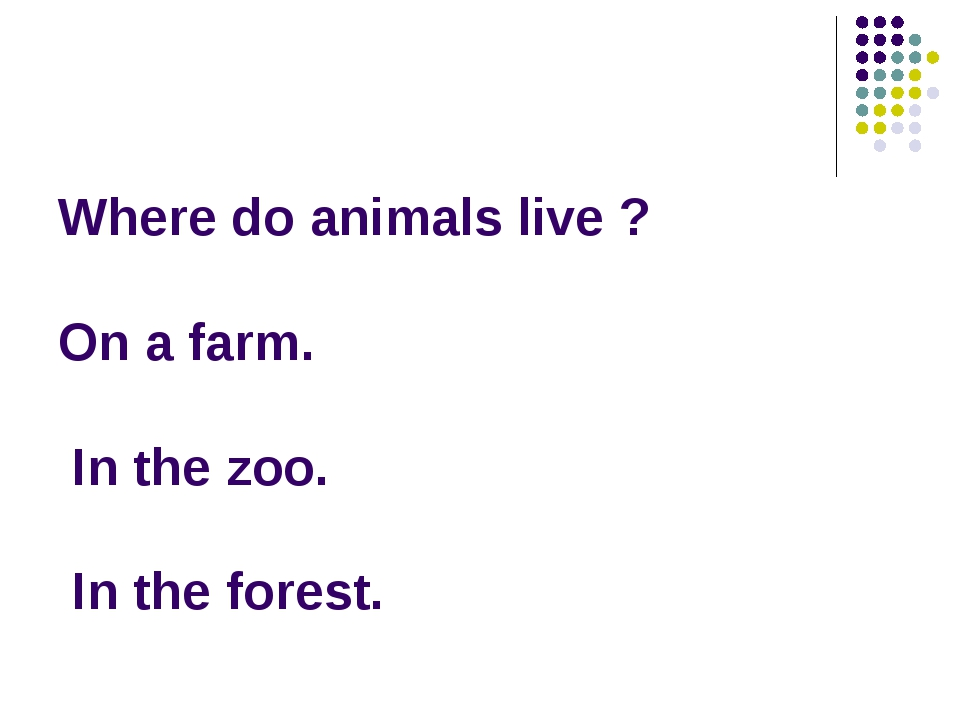 Where do animals live ? On a farm. In the zoo. In the forest.