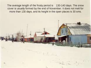 The average length of the frosty period is 130-140 days. The snow cover is us