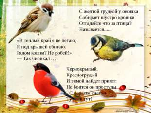 «В теплый край я не летаю, Я под крышей обитаю. Рядом кошка? Не робей!» — Так