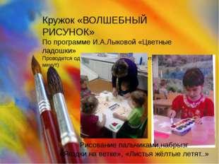 Кружок «ВОЛШЕБНЫЙ РИСУНОК» По программе И.А.Лыковой «Цветные ладошки» Проводи