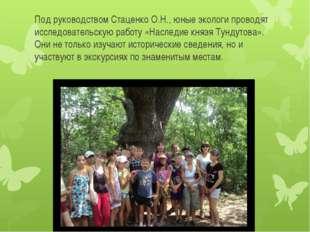 Под руководством Стаценко О.Н., юные экологи проводят исследовательскую работ